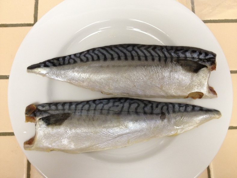 Fillets of Scomber scombrus, the Atlantic mackerel. (Image Credit: Ben Young Landis/CC-BY)