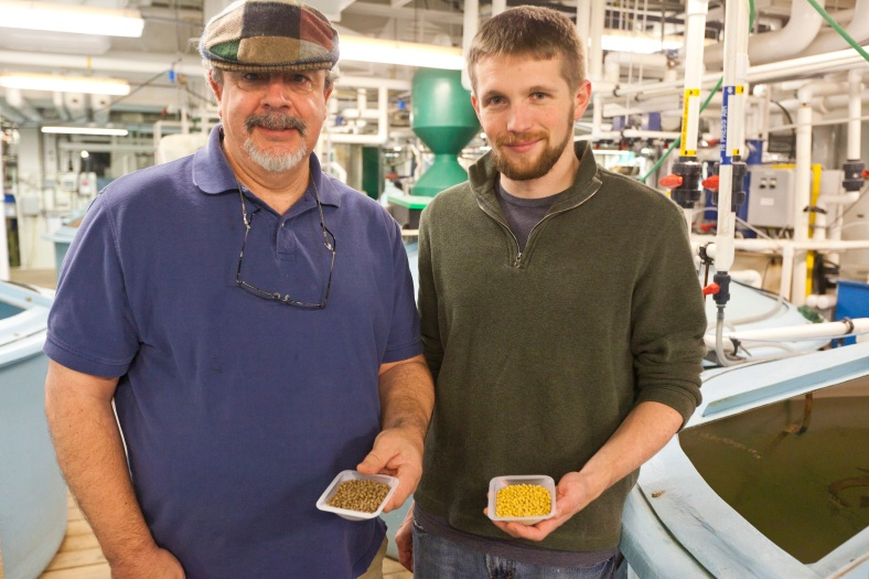 Researchers Al Place and Aaron Watson (right) at their research facility at the University of Maryland Center for Environmental Science. Image Credit: University of Maryland Center for Environmental Science/Cheryl Nemazie)