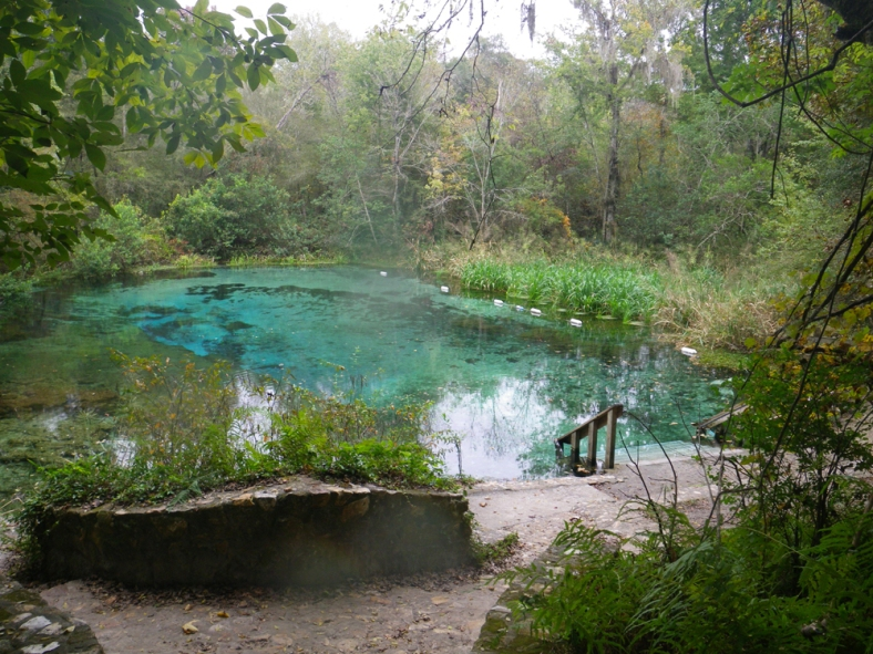 The Head Spring of the Ichetucknee River, in Florida, USA. (Image Credit: Ben Young Landis/CC-BY)